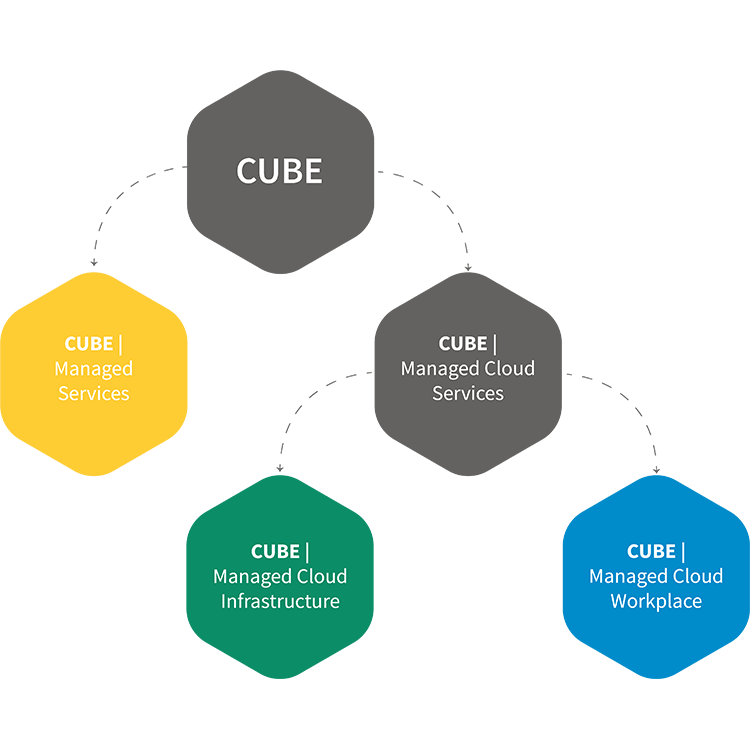 IT Managed Services CUBE
